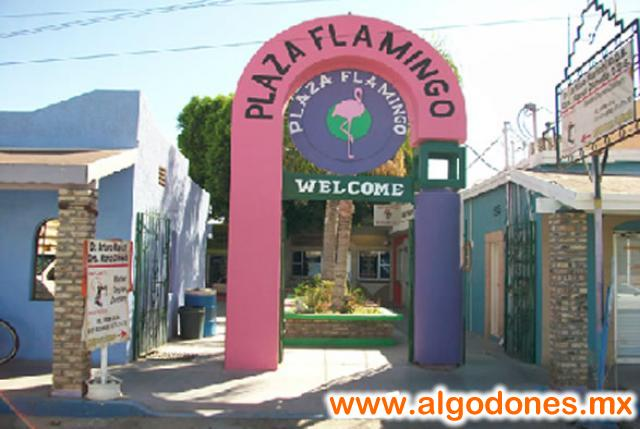 Front Plaza in Los Algodones