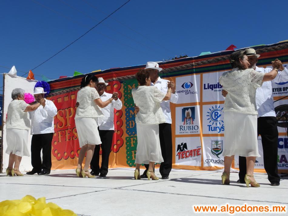 Spring Party 2017 Los Algodones Mexico