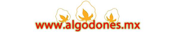 Coupons Algodones.mx