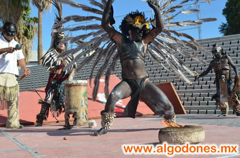 About Los Algodones Mexico Dental Capital Of The World